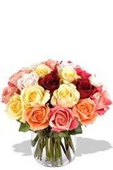 2 Dozen Assorted Roses